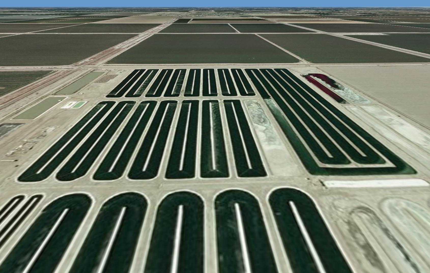 biohospodarstvo biopaliva