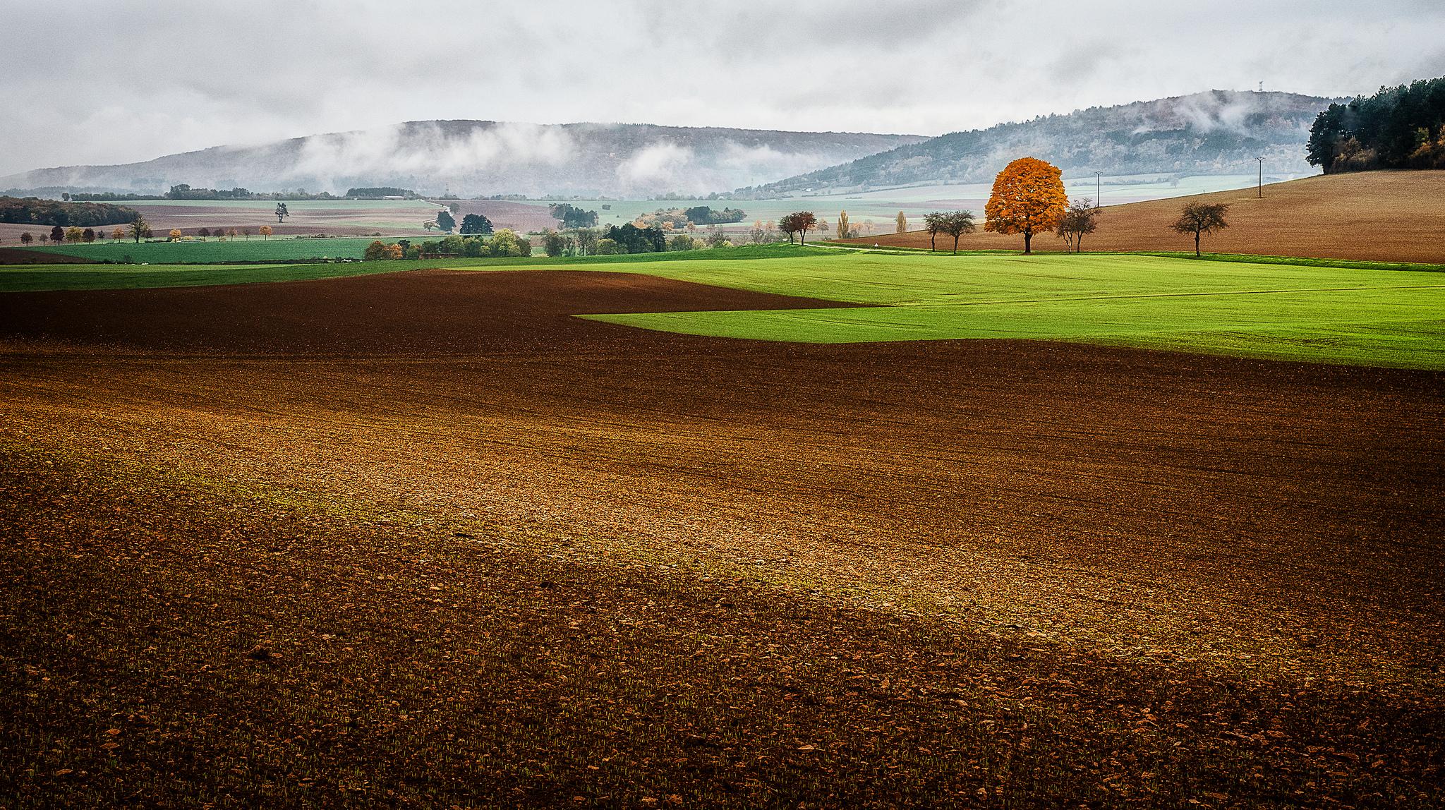 Francúzsko, biohospodárstvo, poľnohospodárstvo