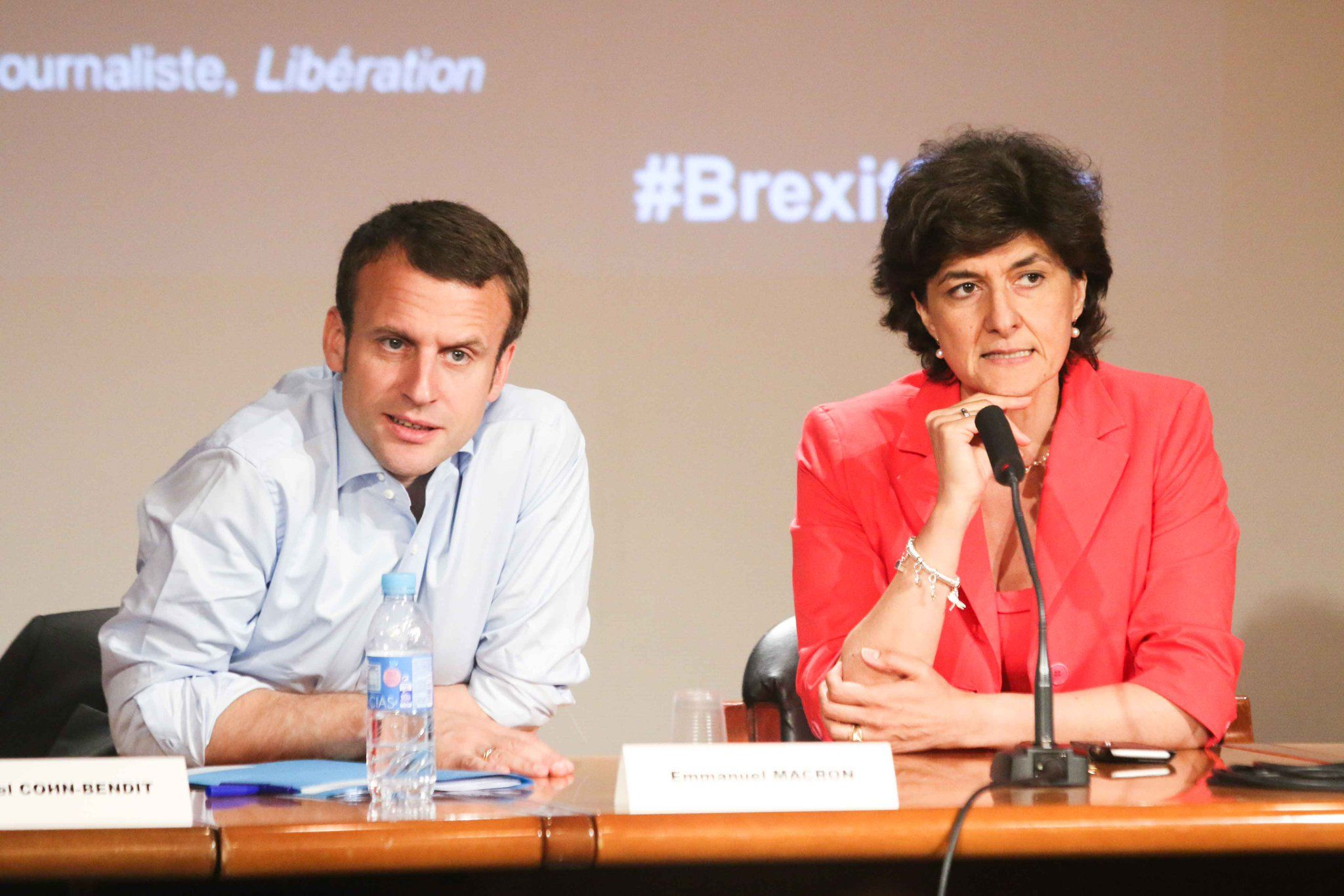 Sylvie Goulard, Emmanuel Macron